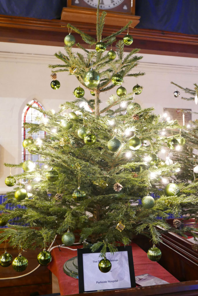 PARKSIDE HOSPITAL: The Gift of Christmas